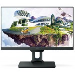 BENQ PD2500Q PRO VIDEO/CAD EDITING MONITOR GREY