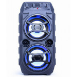 GEMBIRD BLUETOOTH PARTY SPEAKER WITH KARAOKE FUNCTION - (SPK-BT-13)